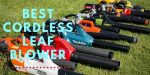 Best Cordless Leaf Blower in the UK