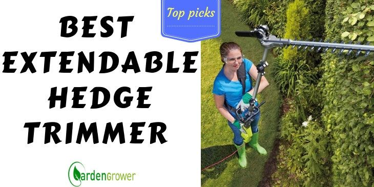 Extendable Hedge Trimmer