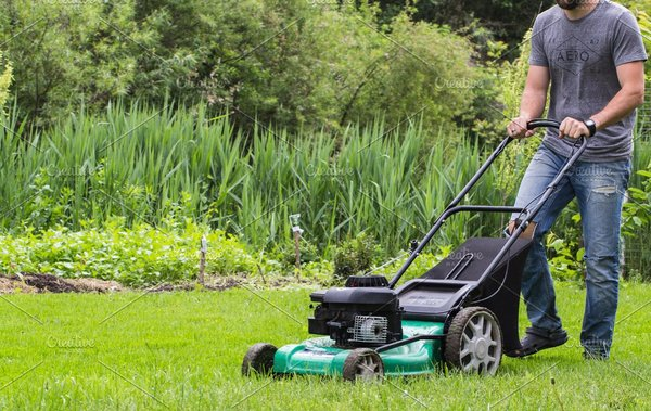 best rotary lawn mower