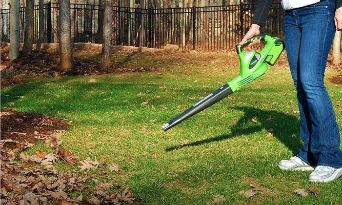 Best Garden Vacuum Reviews