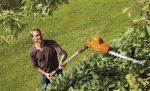 Best telescopic hedge trimmer UK