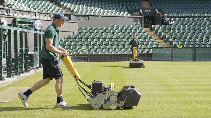 best lawn mower for stripes UK
