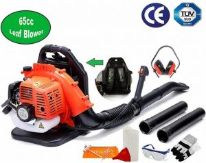 10. 65cc Petrol Backpack Leaf Blower