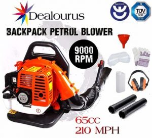 5. Dealourus 65cc Petrol Backpack Leaf Blower