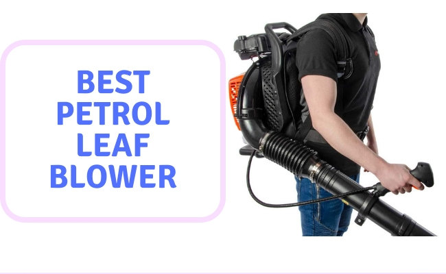 Best Petrol Leaf Blower UK
