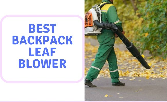 Best Backpack Leaf Blower UK