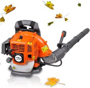 Anself 42,7 cc Petrol Backpack Leaf Blower