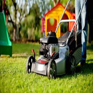 Petrol Push Mower