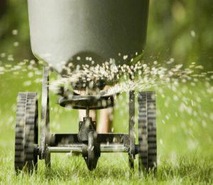 Add Fertilizers