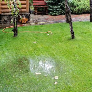 Do you Experience Drainage Problems During Spring Lawn Maintenance
