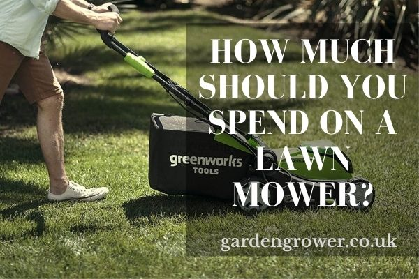 How Much Should You Spend On A Lawn Mower