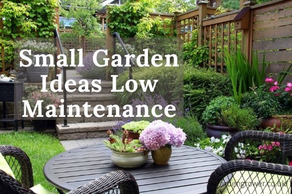 Small Garden Ideas Low Maintenance