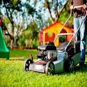 When to Scarify a Lawn UK