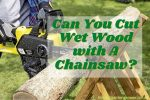 Can You Cut Wet Wood with A Chainsaw