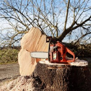 Electric Chainsaw and Why it is Worth the Money