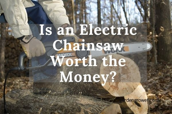 Is an Electric chainsaw Worth the Money