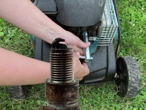 Check the spark plug