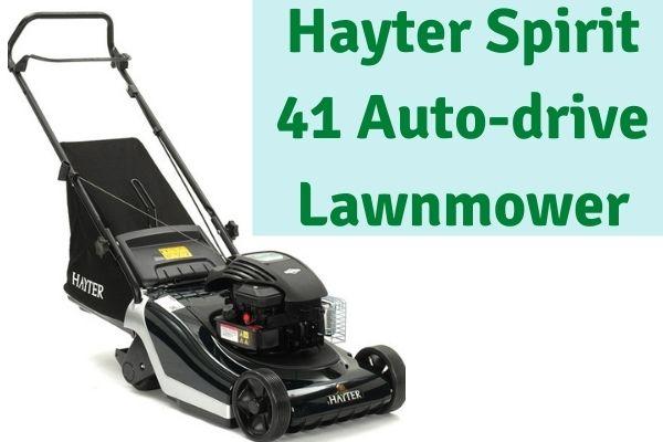 Hayter Spirit 41